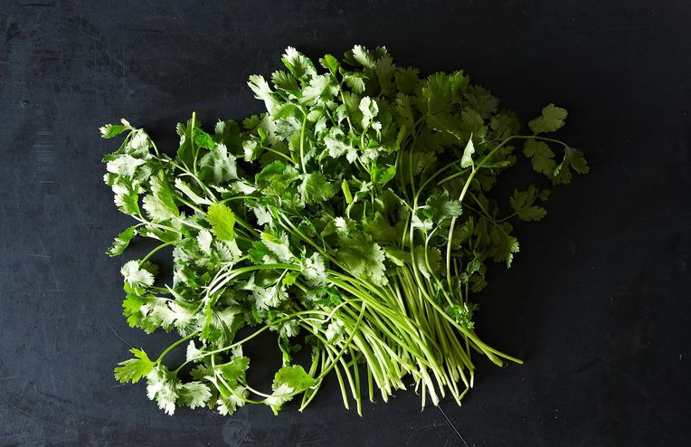 The Video of a Man Chopping Cilantro We Can't Stop Watching