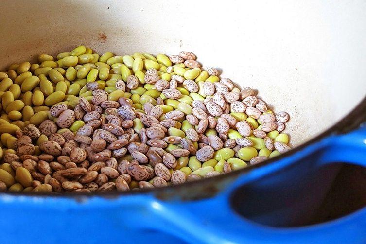 Carnitas + Bean Tostadas