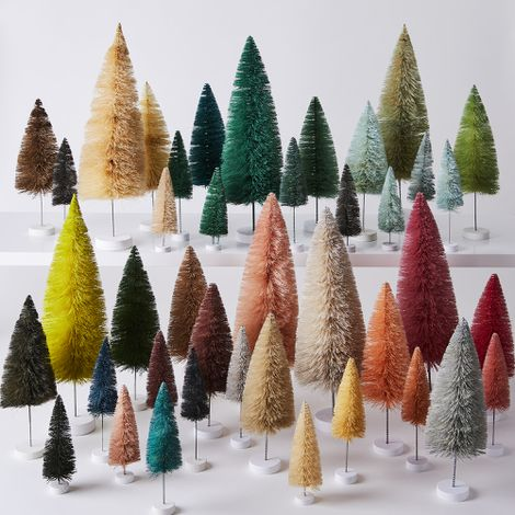 Modern Winter Pine Trees