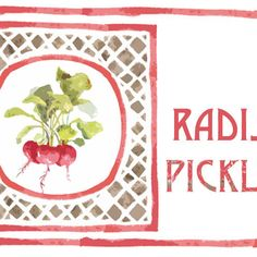 Refrigerator Radish Pickles