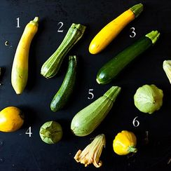 Down & Dirty: Summer Squash