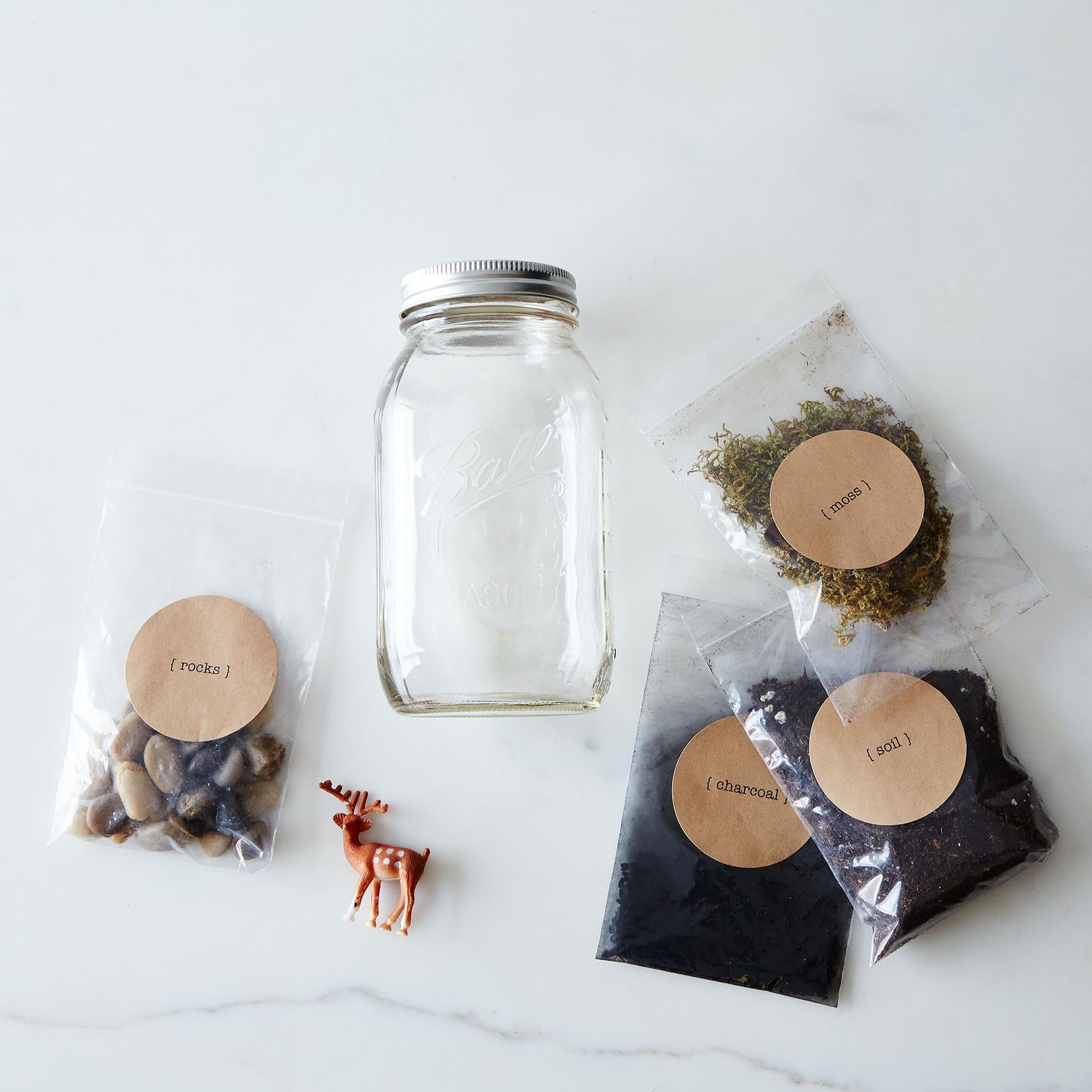 Diy terrarium kit on food52 for Diy blank canvas