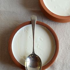 DIY yogurt