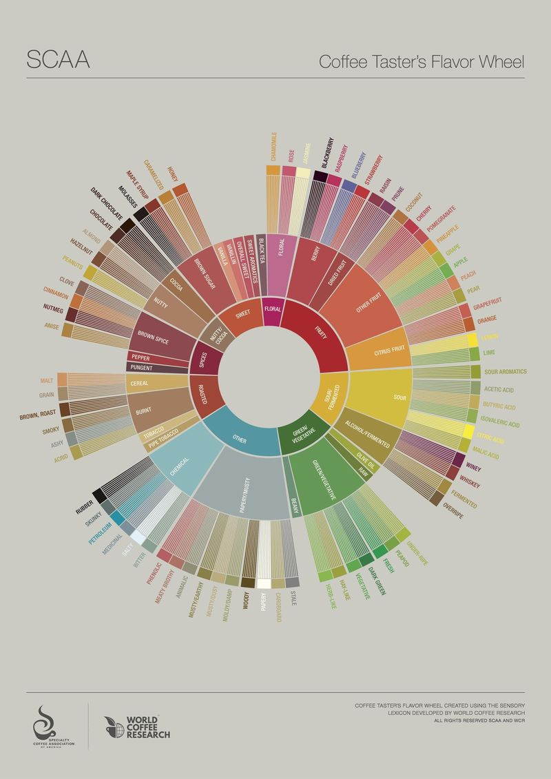The new Coffee Flavor Wheel.