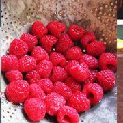 7771f13b 4d81 4ae1 8d44 5a434a7a677b  raspberry after eight