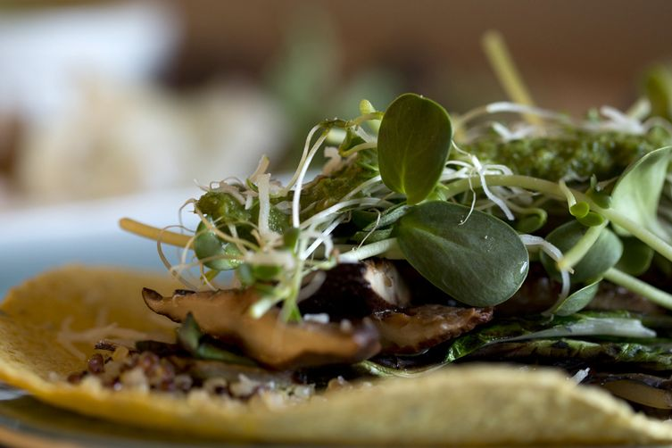 Grilled Mushroom & Bok Choy with Asian Cilantro Pesto