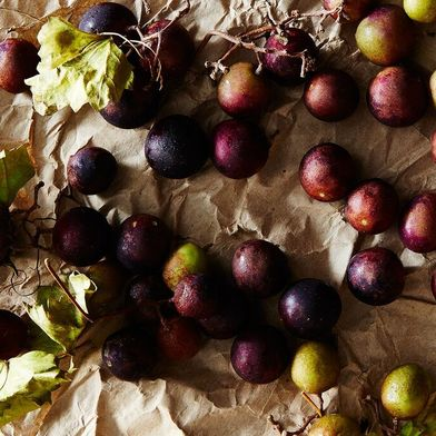 Have You Been Missing Out onMuscadines?