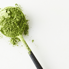 Matcha 101: Your Guide to Green Goodness