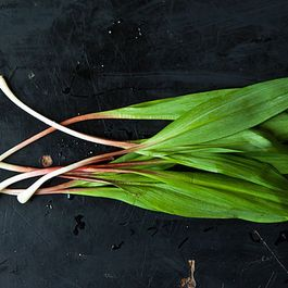 Down & Dirty: Ramps