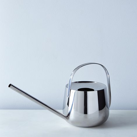 Well Stainless Steel Watering Can