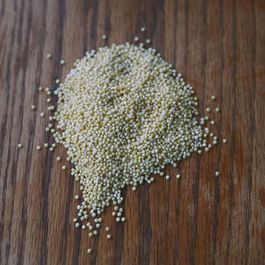 Millet, or Why You Should Be Eating Birdseed