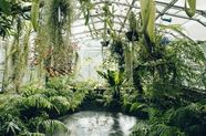 A Plant-Lover's Guide to the 5 Best Greenhouses in the UK