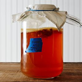 Help! My Roommates Hate My SCOBY