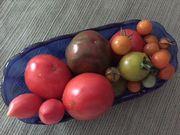 Dda7d5df 73e4 4bfd af09 b88609654fc2  tomatoes16