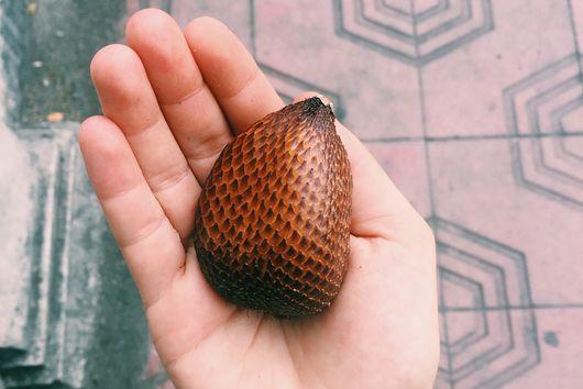 The Fruit I Traveled 9000 Miles to Eat