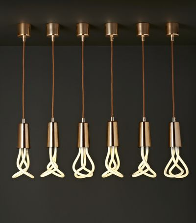 what would thomas edison think photos by frenchy fancy plumen - Decorative Light Bulbs