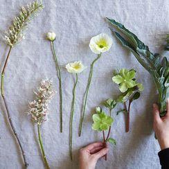 For Longer Lasting Flowers, Trim Them Like This