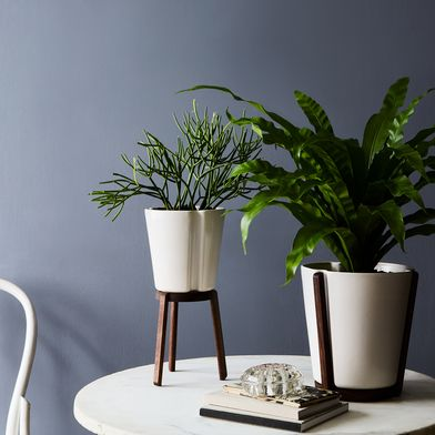 Ceramic & Walnut Base Planter