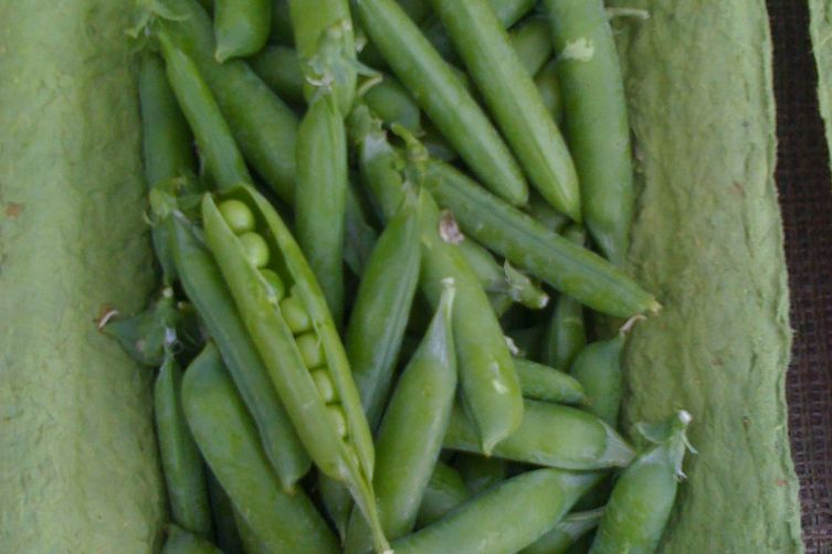 Spring Green Pea Risotto with Lemon