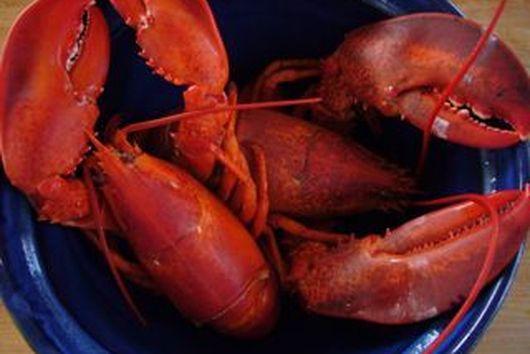 """I love Rhode Island """"Lobsta"""" Salad"""