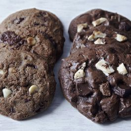 Two Chocolate Cookies
