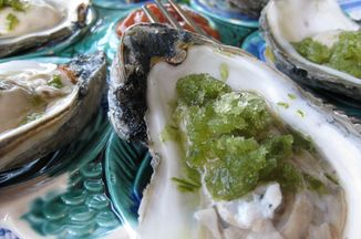 7764e7a7-668b-437c-ad48-ad7b0b7de135.oyster_with_green_snow