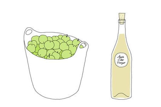 From Scraps to Vinegar