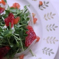 Blood Orange and Pea Sprout Salad