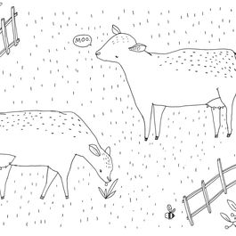 Why Dairy Cows Drink A Bathtub of Water Every Day
