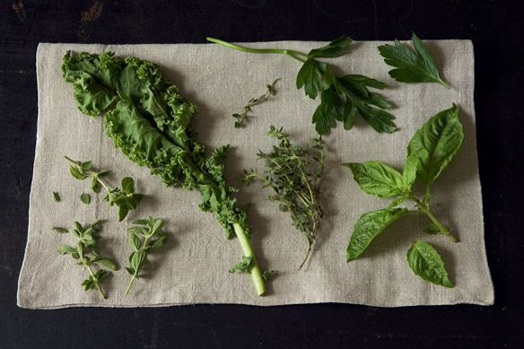 herbs for pesto