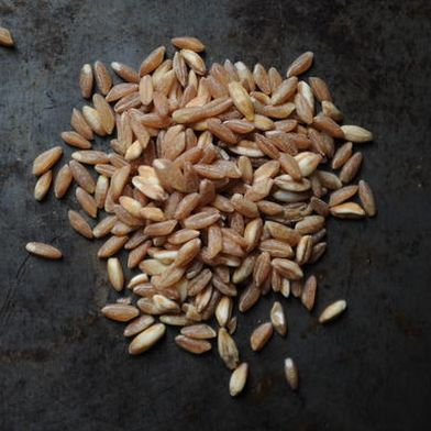 Get To Know Your Grains: Farro