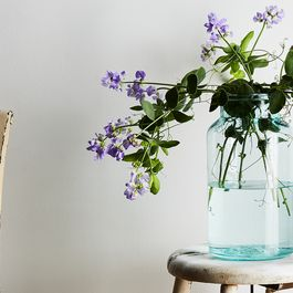 How to Make Your Home Feel Fresh with Classic Vintage Wares