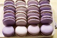 Parisian Macarons
