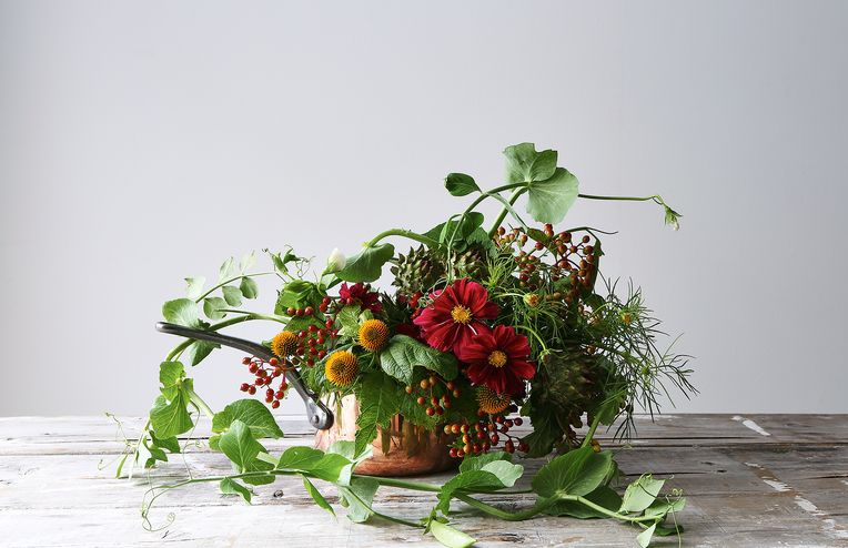 The Flower Farming Instagram You Should Follow
