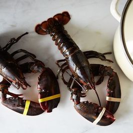 How to Cook a Lobster by mrslarkin