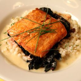 381563b2 c447 42dc bdee 76a69c4359d1  salmon with swiss chard and coucous