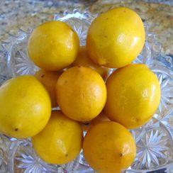 My Meyer Lemon Marmalade