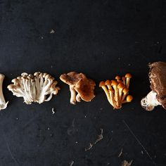 How to Prep Mushrooms