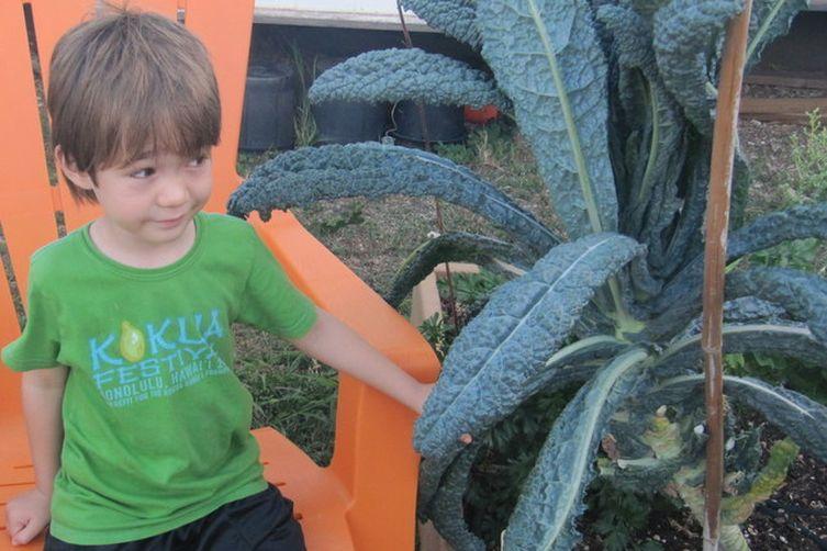 Kale Slaw For All