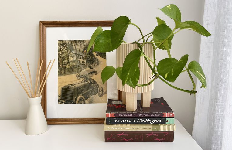 A DIY Plant Stand That's... Hiding in the Recycling Bin