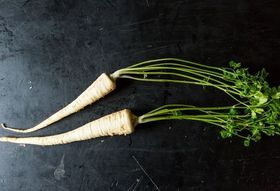 Parsley Root: The Herb's Dirty Little Secret