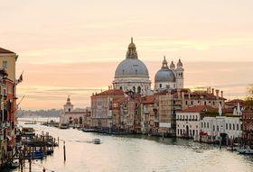 How to Shop Your Way Around Venice's Rialto Market