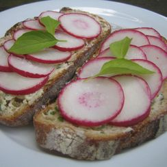 Radish Toasts with Lemon Basil Butter