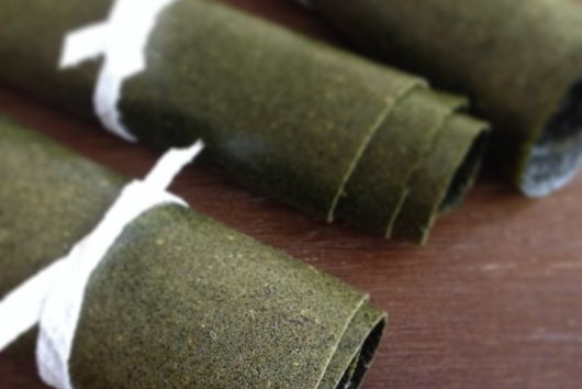Dinosaur Kale Fruit Leather
