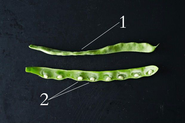 How to Select and Use Romano Beans, from Food52