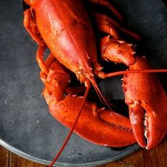 5 Links to Read Before Preparing Shellfish