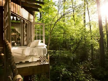 Airbnb's Hottest Listing Is a Treehouse