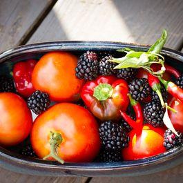 99437855 822b 4aa9 a8b7 914f36382691  tomato raspberry salsa ingredients 2822