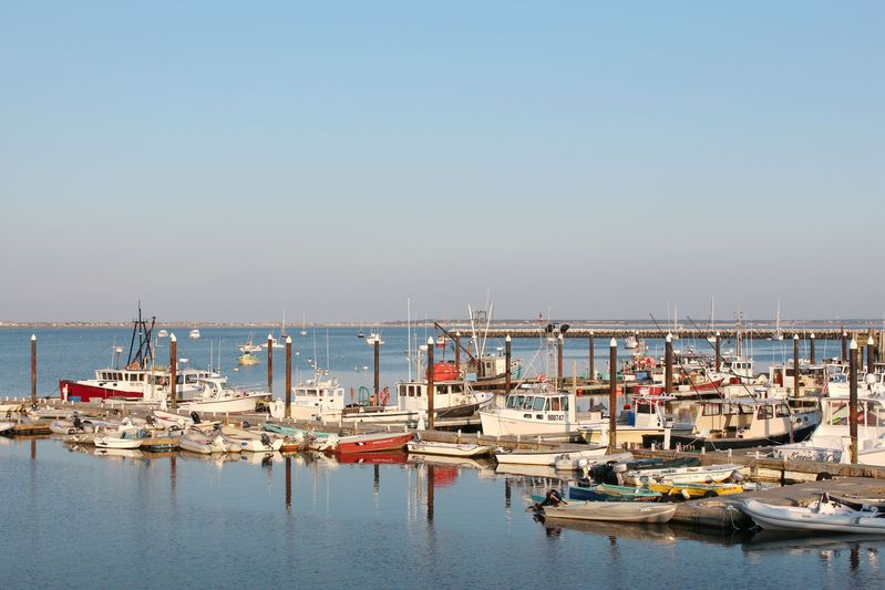 A view of Provincetown Harbour.