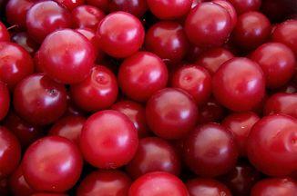 0c0ecaad 4de2 4da5 b831 2f2f2c776d6e  plums